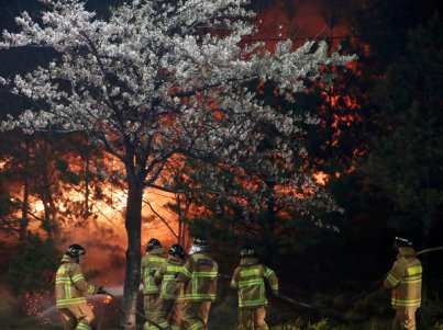 Firefighters work to put out flames during a wildfire in Sokcho, South Korea.