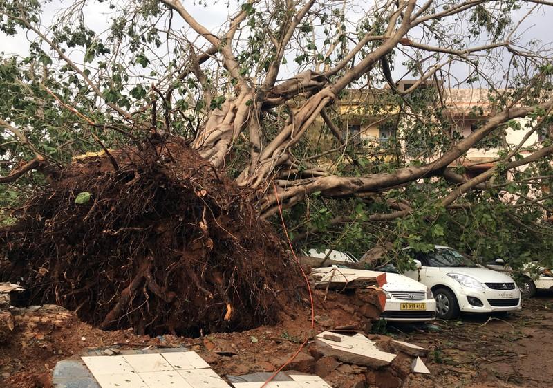 Cyclone Fani aftermath